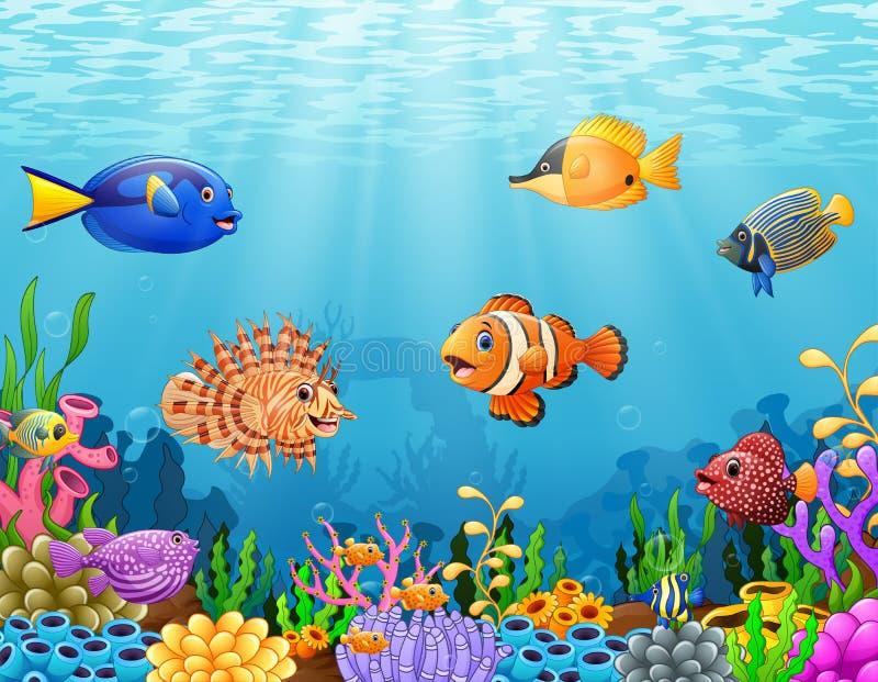 Cartoon fish under the sea. Illustration of Cartoon fish under the sea stock illustration