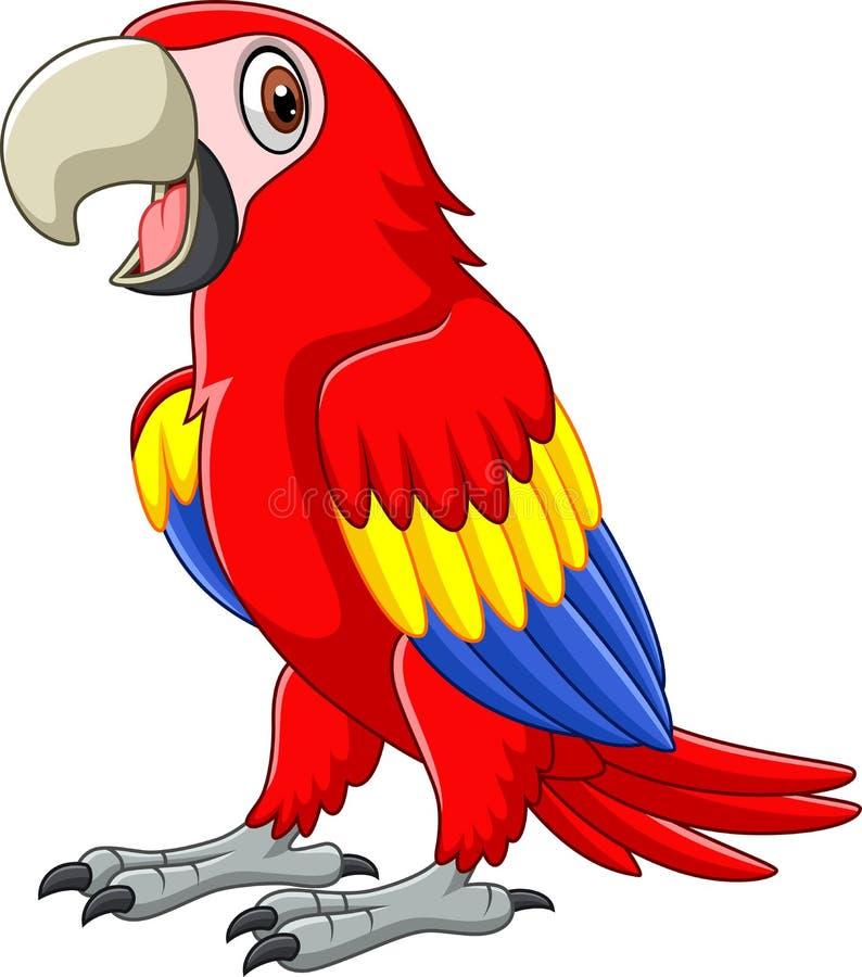 Cartoon funny macaw vector illustration