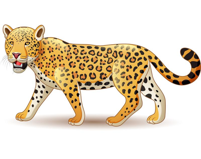 Cartoon Leopard Stock Illustrations – 5,793 Cartoon Leopard Stock ...