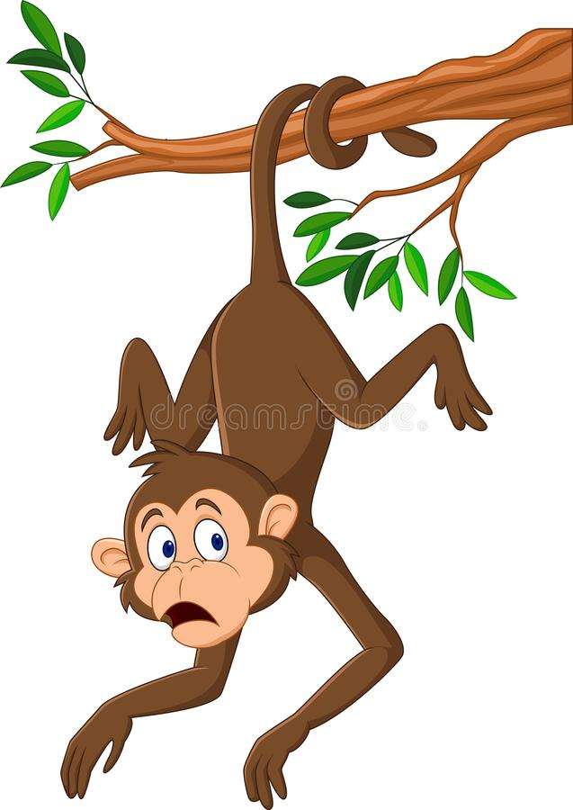 Monkeys Hanging From Tree Cartoon, HD Png Download - kindpng