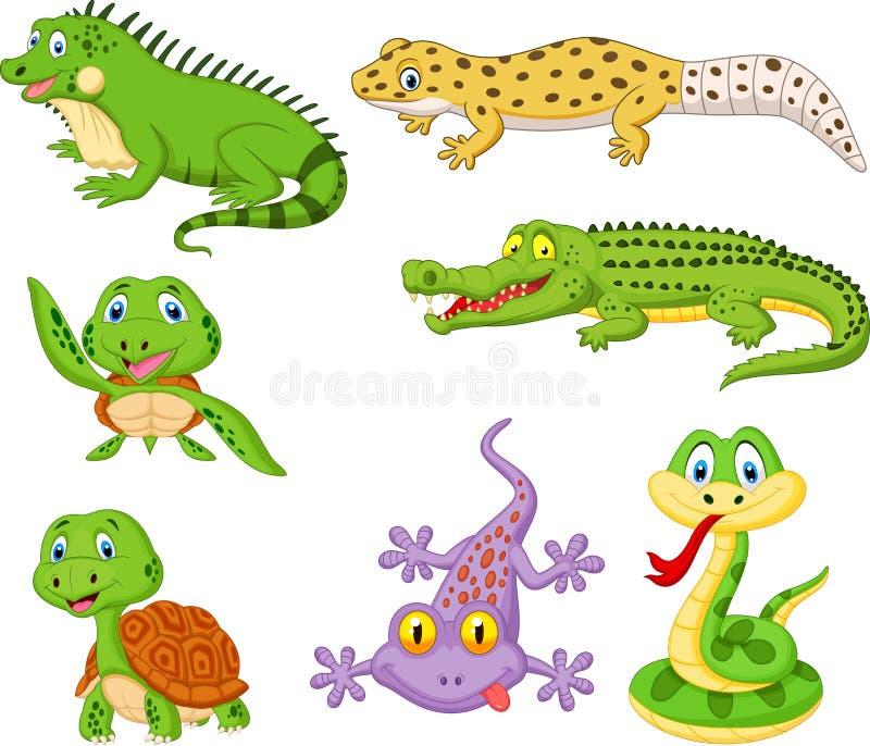 Amphibians Stock Illustrations  U2013 1 001 Amphibians Stock
