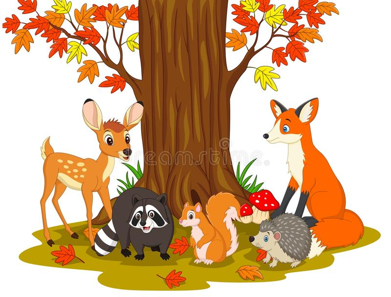 Cartoon wild creatures in the forest vector illustration