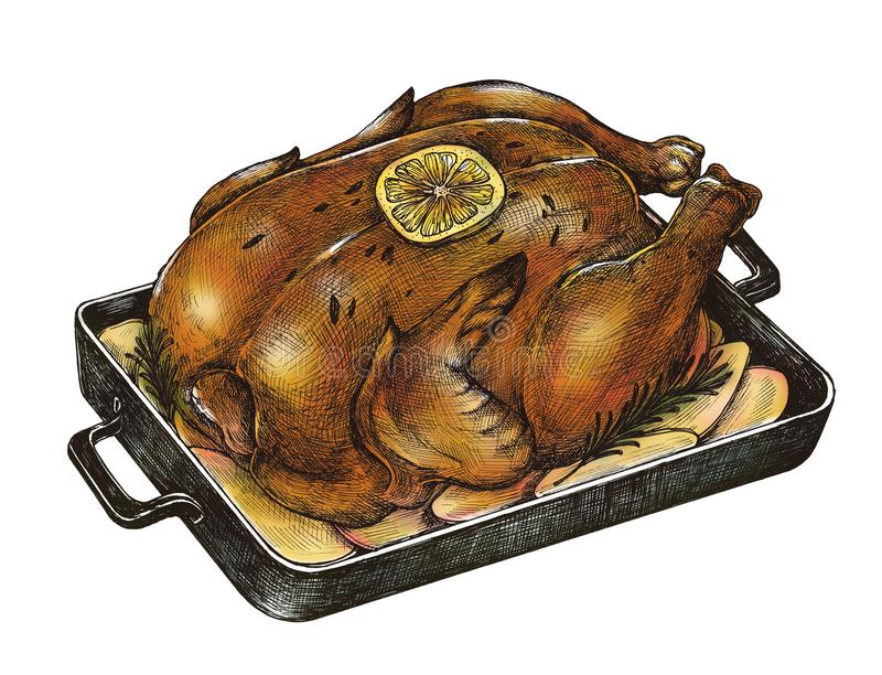 Illustration of chicken heated from oven vector illustration