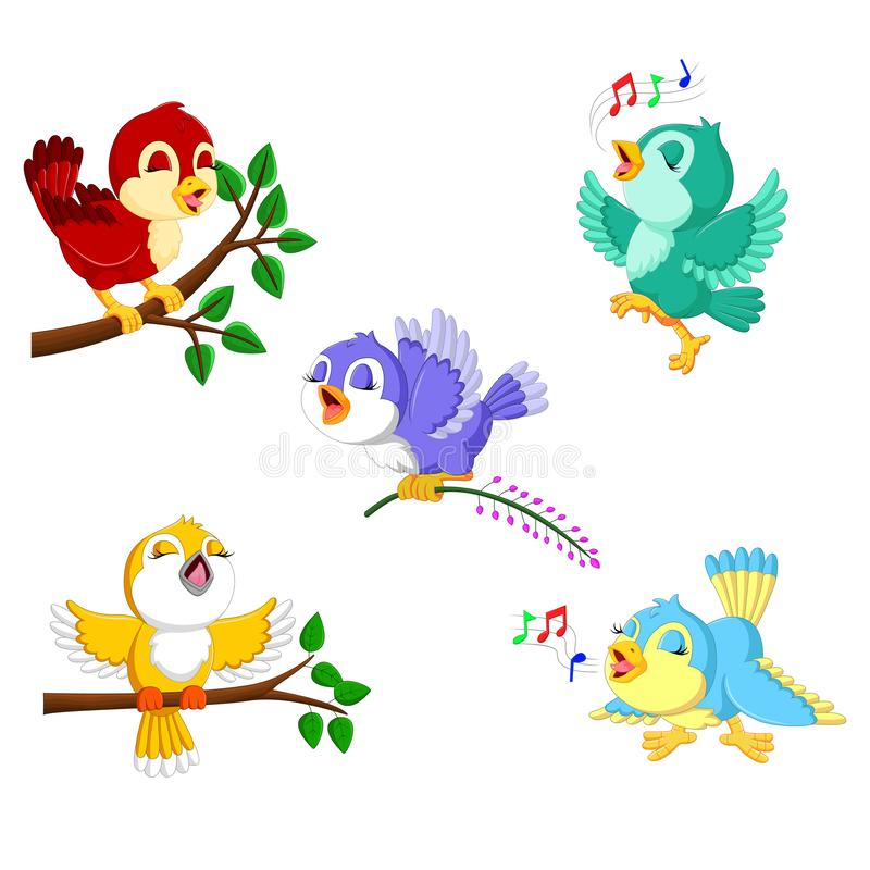 The collection birds with the different color and activities stock illustration