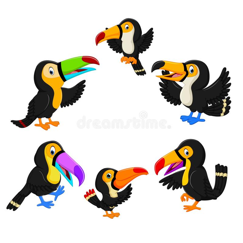 The collection of black toucan with the different posing. Illustration of the collection of black toucan with the different posing stock illustration
