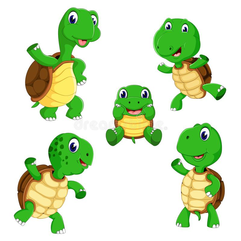 The collection of the tortoise with different posing and size. Illustration of the collection of the tortoise with different posing and size vector illustration