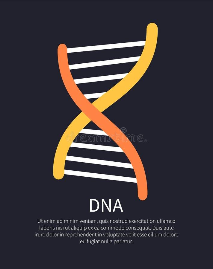 Illustration colorée d'hélice jaune et orange d'ADN illustration stock