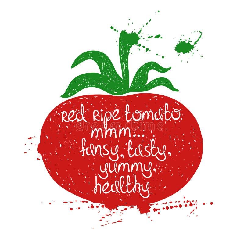 Illustration colorée de silhouette d'isolement de tomate illustration libre de droits