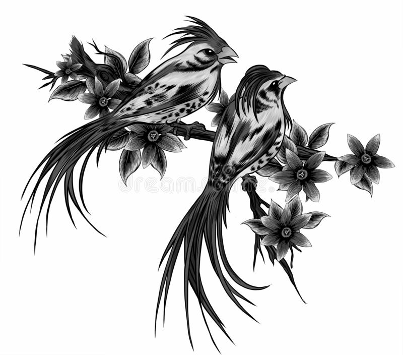 illustration Couple of birds in the three and flowers vector illustration