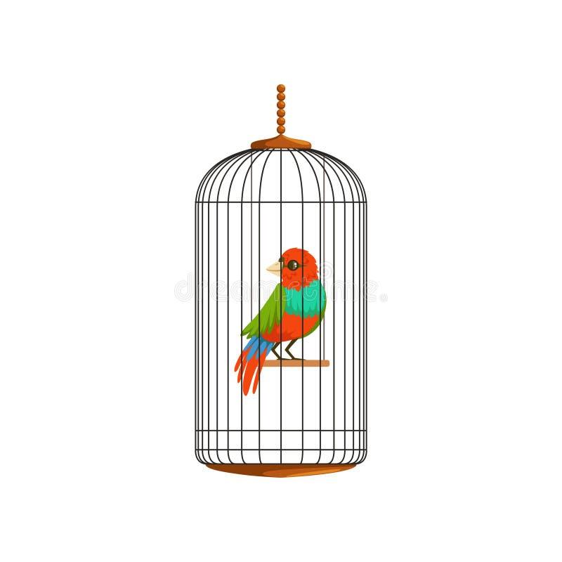 Illustration créative de petit perroquet dans la cage de fil en métal Oiseau domestique avec les plumes multicolores Conception p illustration libre de droits