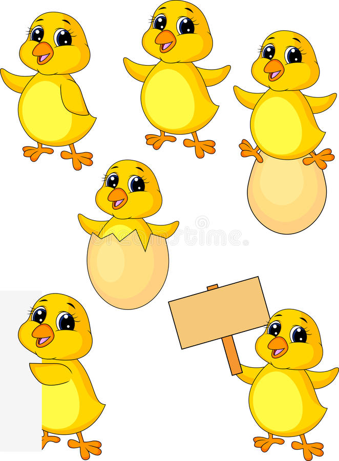 Cute baby chicken cartoon set royalty free illustration