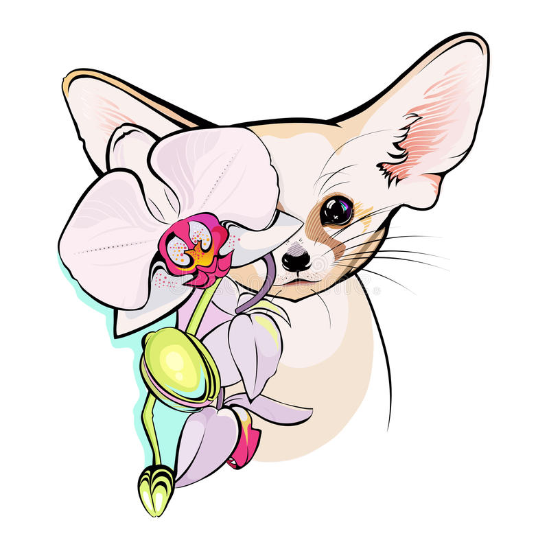 Illustration of cute Fox Fennec. Small African fox Fennec Fun nice animal royalty free illustration