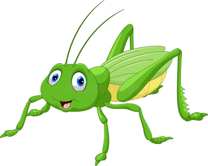 Cute grasshopper cartoon. Illustration of Cute grasshopper cartoon isolated on white background stock illustration