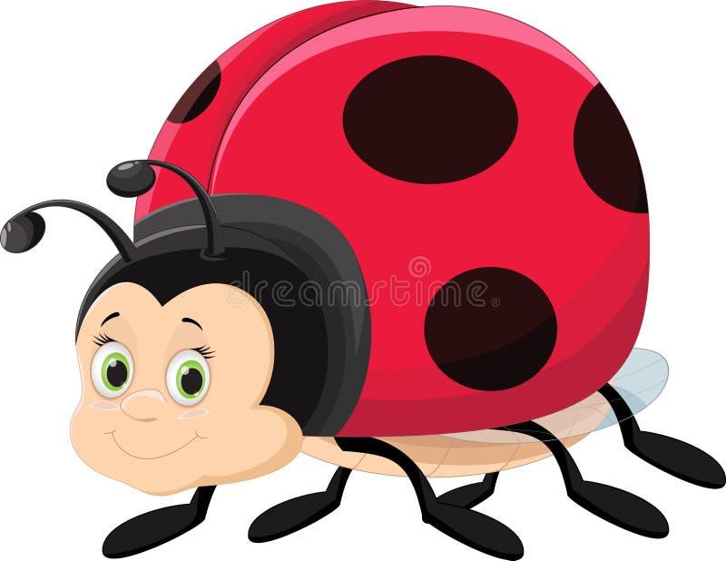 Illustration of cute ladybug cartoon. Vector illustration of cute ladybug cartoon isolated on white stock illustration