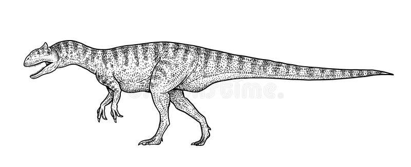Illustration d'Allosaurus, dessin, gravure, encre, schéma, vecteur illustration de vecteur