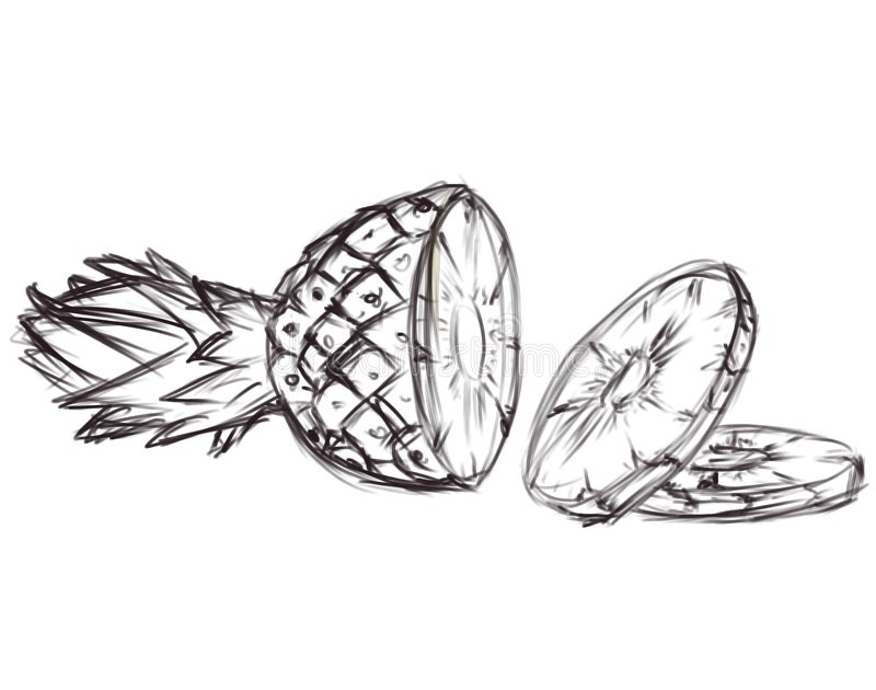 Illustration d'ananas. Ske illustration stock