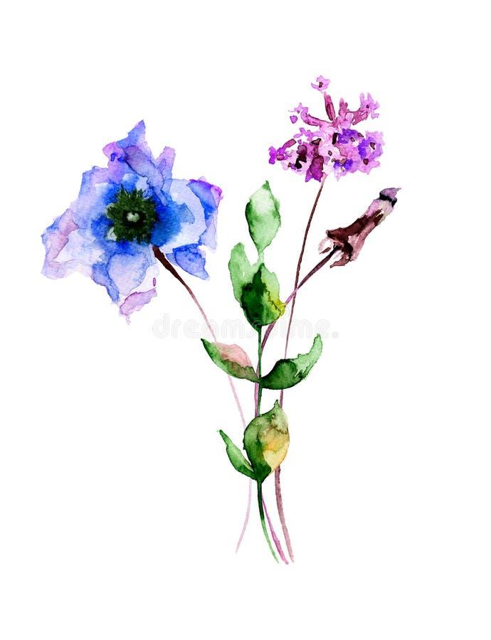Illustration d'aquarelle avec les fleurs originales d'été illustration stock