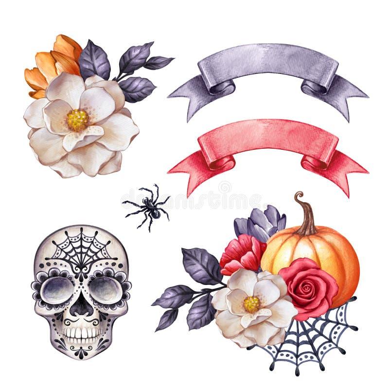 Illustration d'aquarelle, clip d'Halloween, éléments de design d'automne, crâne, fleurs, citrouille, automne, clip de vacances is illustration de vecteur