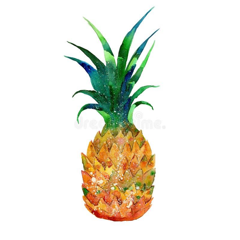 Illustration d'aquarelle d'ananas illustration libre de droits