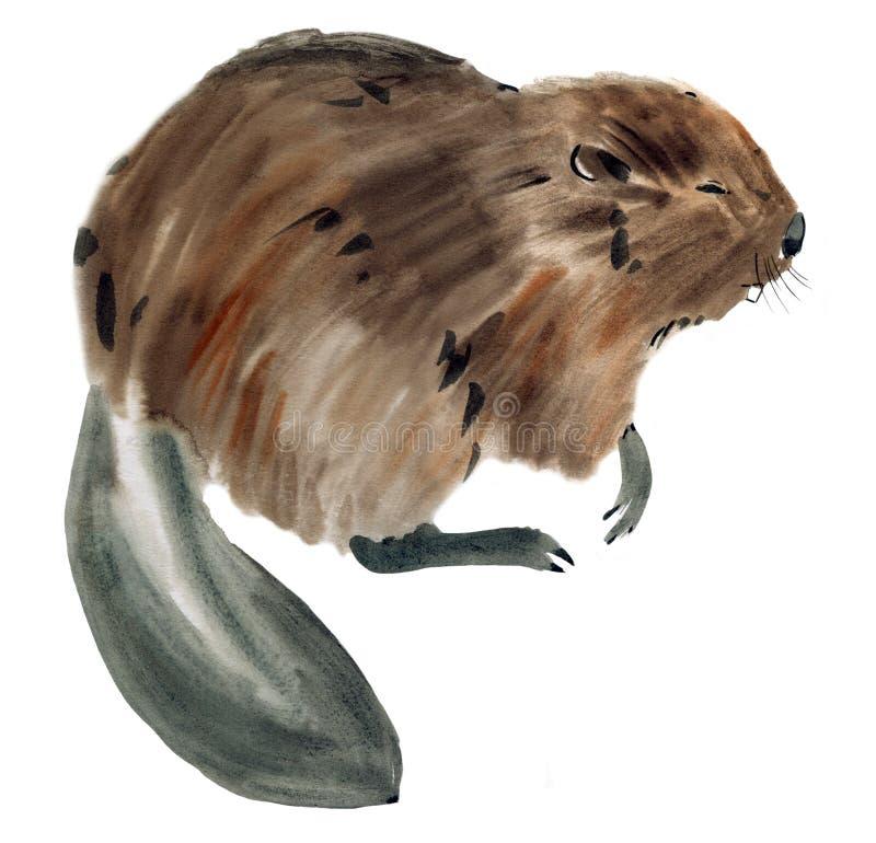Illustration d'aquarelle d'un castor à l'arrière-plan blanc illustration de vecteur