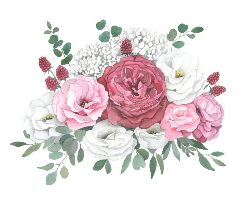 Illustration d'aquarelle de bouquet avec la rose de rouge, hortensia, eucalyptus illustration stock