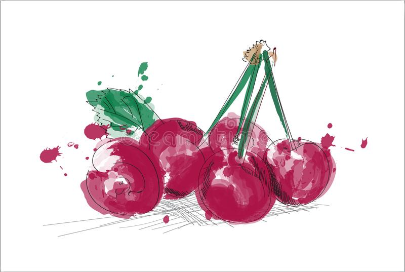 Illustration d'aquarelle de cerise cerises tirées par la main avec la dispersion d'encre Fruit mûr frais illustration de vecteur