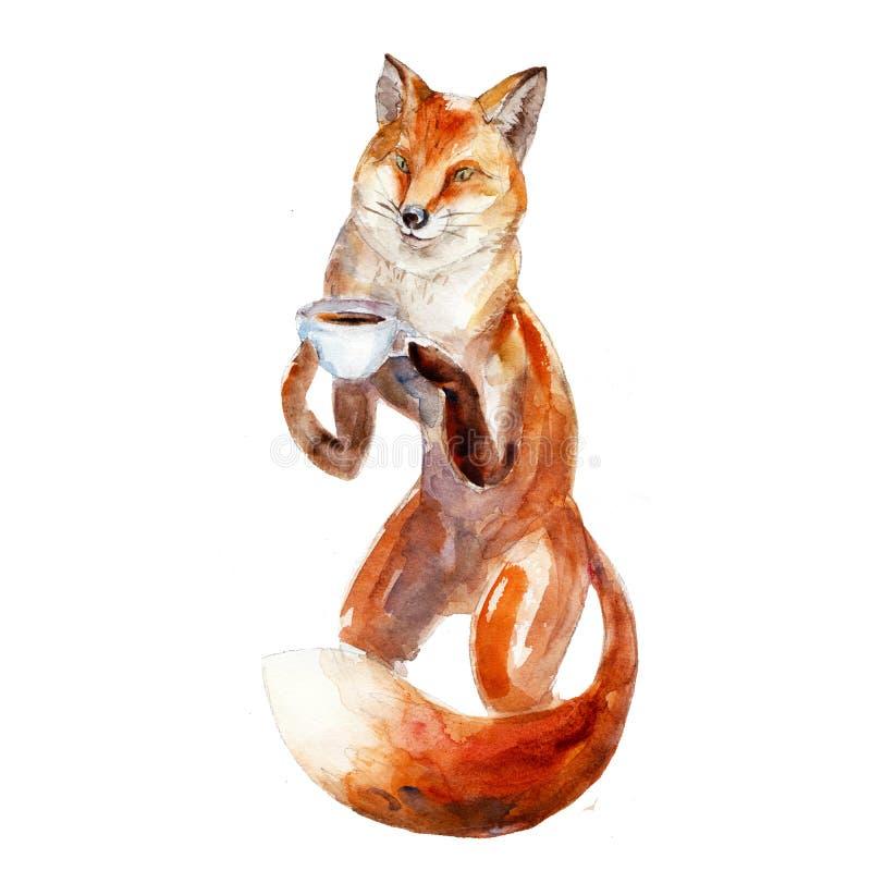 Illustration d'aquarelle de renard avec la tasse de café, isolat illustration libre de droits