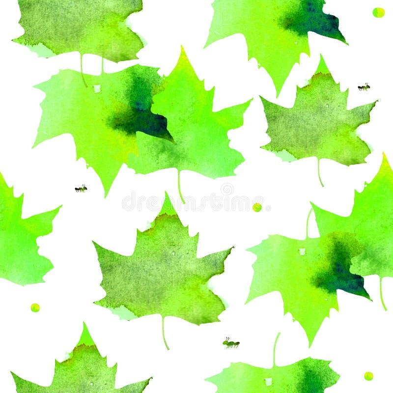 Illustration d'aquarelle Modèle des feuilles vertes chaudes transparentes d'érable illustration libre de droits
