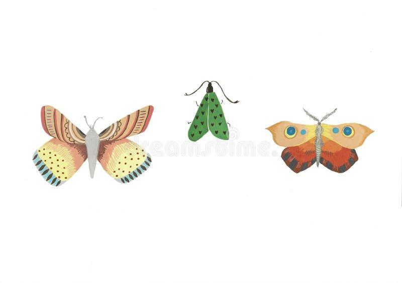 Illustration d'aquarelle d'un papillon d'isolement sur un fond blanc Placez des dessins de papillon illustration de vecteur