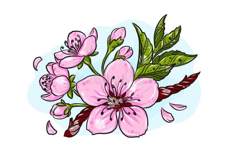 Illustration d'art de Cherry Blossom Vector Line Croquis tiré par la main de Sakura Spring pour le promo saisonnier, vente, carte illustration de vecteur