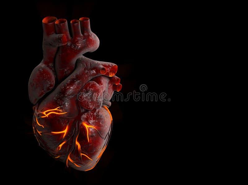 illustration 3d av mänsklig hjärta med brandåder vektor illustrationer