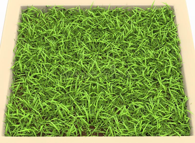 illustration 3d de parterre avec l'herbe illustration libre de droits