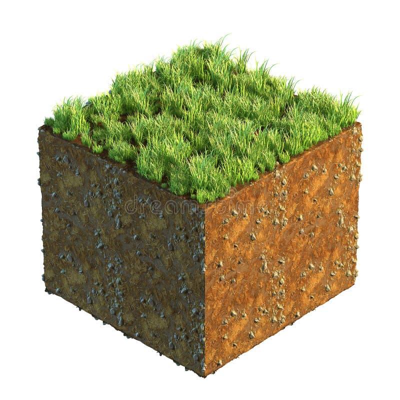 illustration 3d de section transversale de la terre avec l'herbe d'isolement sur le blanc images libres de droits