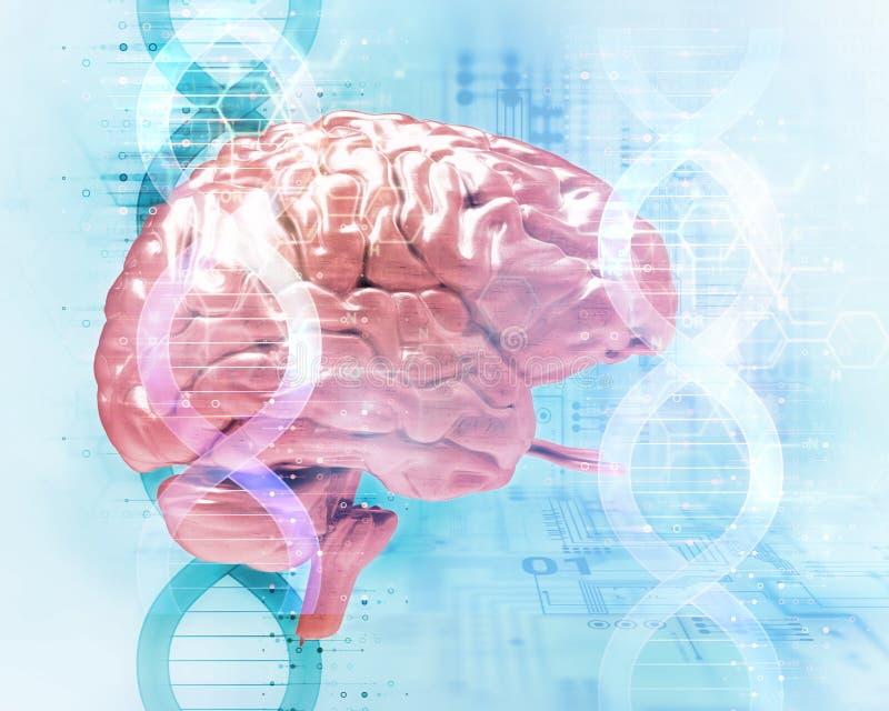 illustration 3d de tête humaine sur l'abrégé sur molécules d'ADN illustration de vecteur