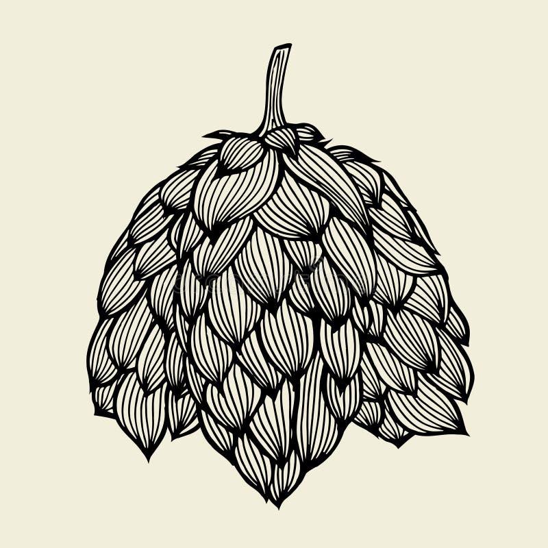 Illustration d'houblon de bière illustration libre de droits
