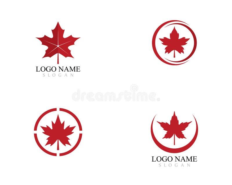 Illustration d'icône de vecteur de calibre de logo de feuille d'érable illustration de vecteur