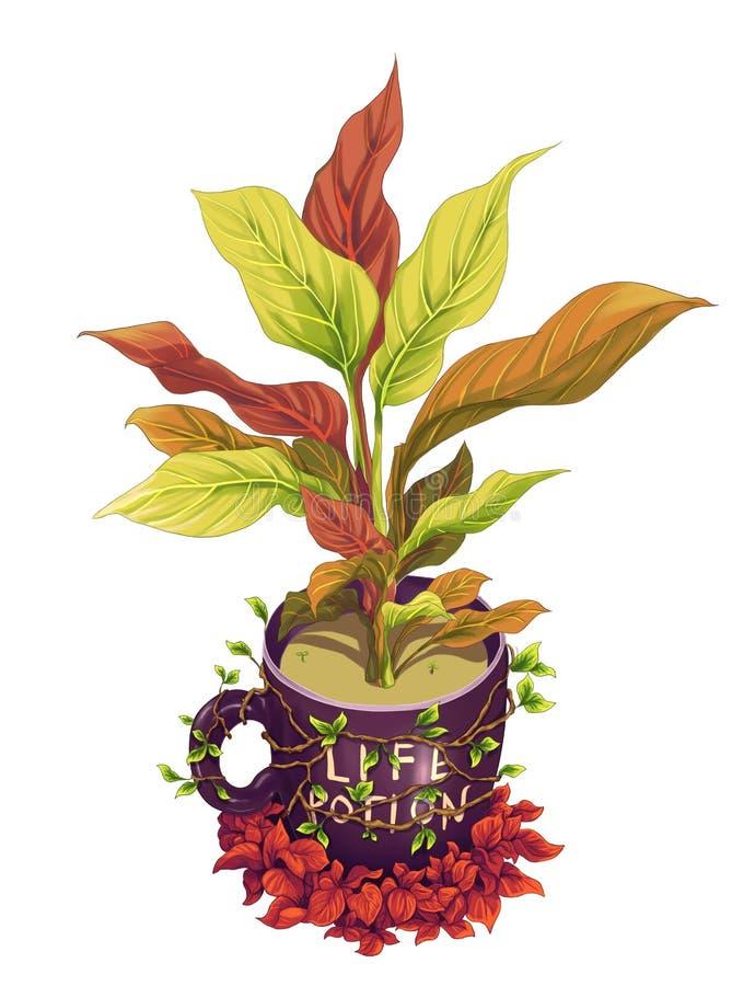 Illustration d'isolement de jus de breuvage magique de la vie avec les feuilles et la fleur saines de vert photos stock