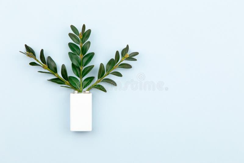 Illustration d'?nergie ou d'?nergie verte d'Eco avec une batterie blanche et des feuilles de brins sur un fond clair avec l'espac photo libre de droits