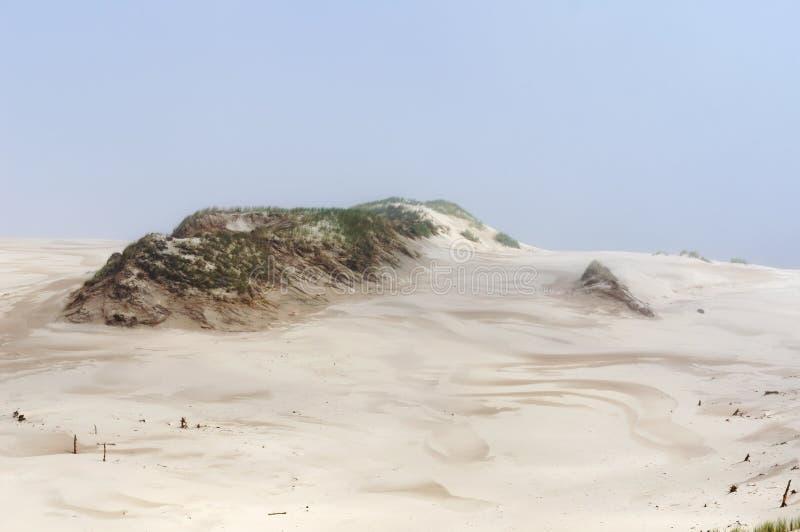 illustration 3d produite par désert arénacée Dunes en parc national de Slowinski en Pologne photos libres de droits