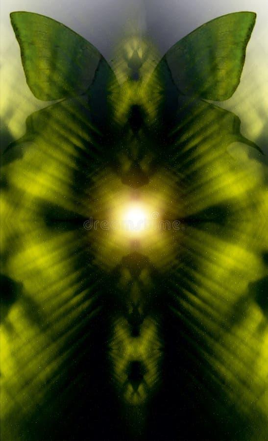 Illustration d'un papillon, milieu mélangé Fond abstrait de couleur photographie stock