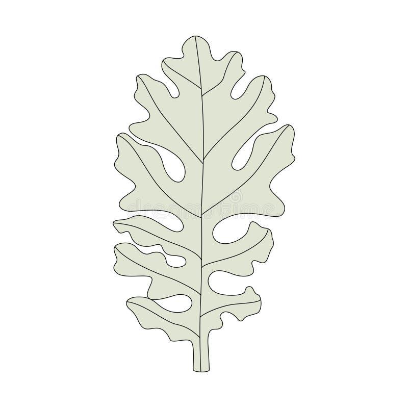Illustration d'une feuille de miller poussiéreux illustration de vecteur