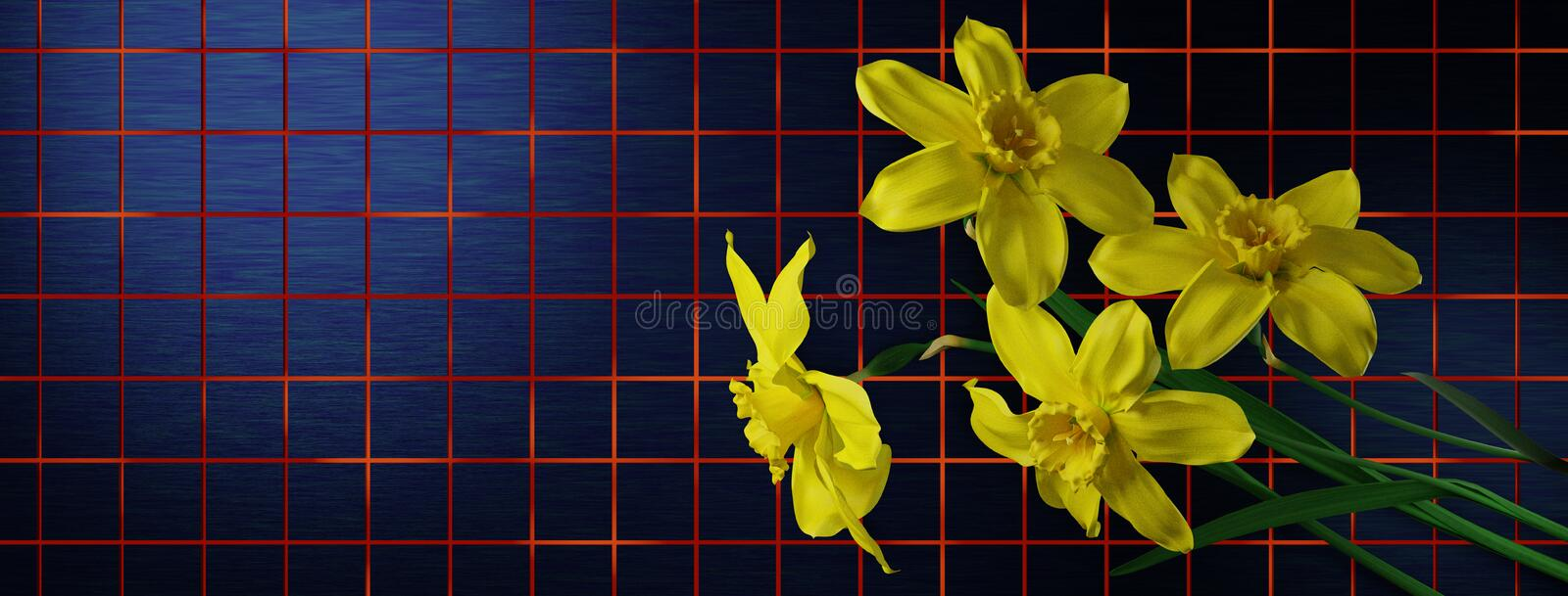 Illustration of daffodils as a web banner stock illustration