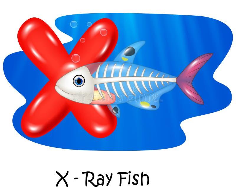 Illustration X de bande dessinée des poissons de rayon X de lettre illustration de vecteur