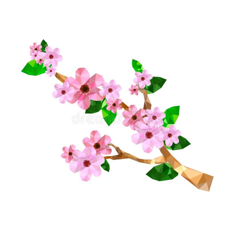 Illustration de branche de fleurs de cerisier d'origami illustration stock