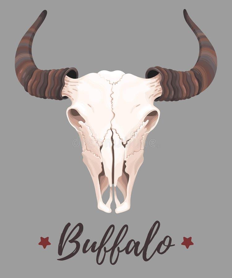 Illustration de crâne de buffle illustration de vecteur