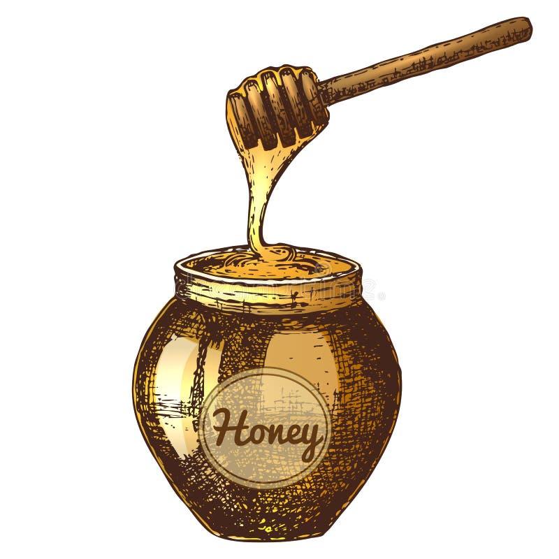 Illustration de croquis d'encre de miel illustration stock