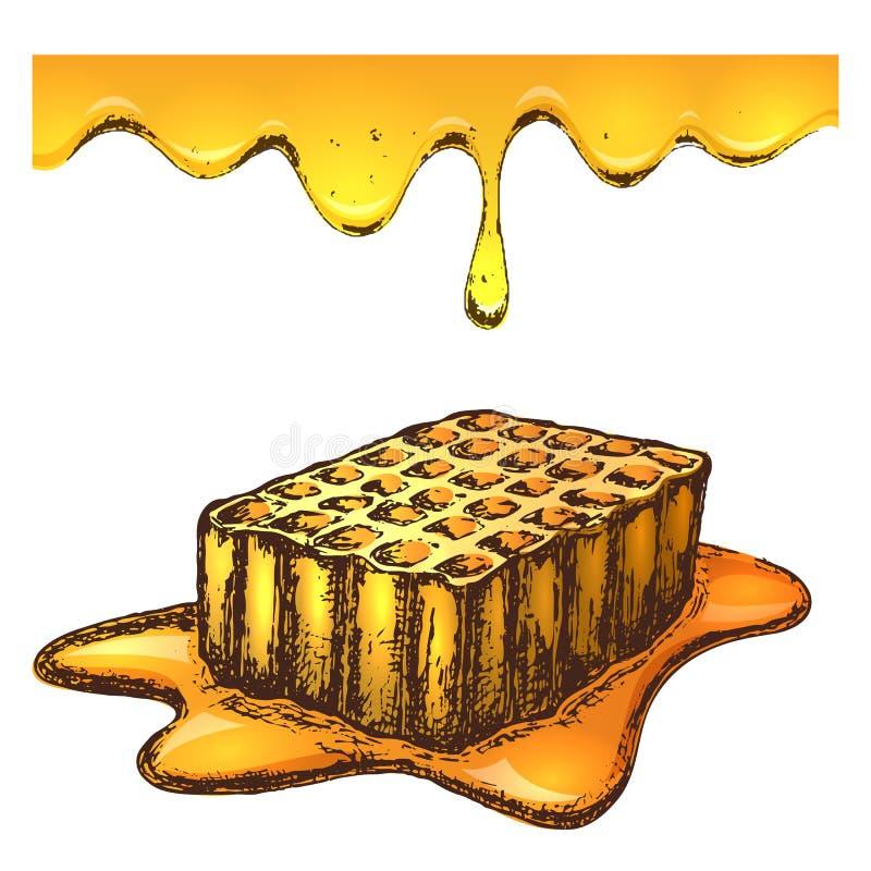 Illustration de croquis d'encre de miel illustration de vecteur