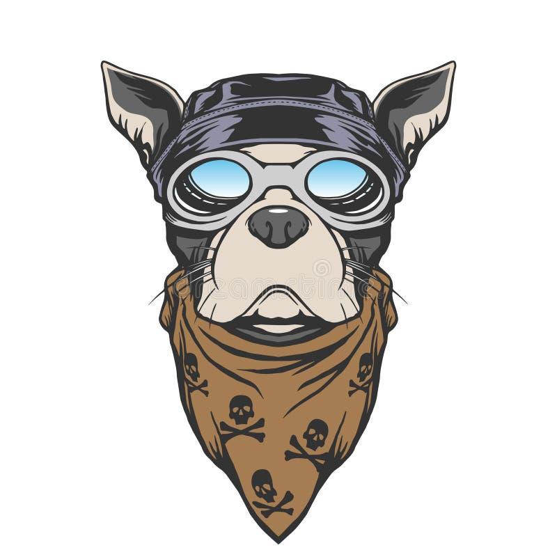 Illustration de cycliste de chien illustration stock