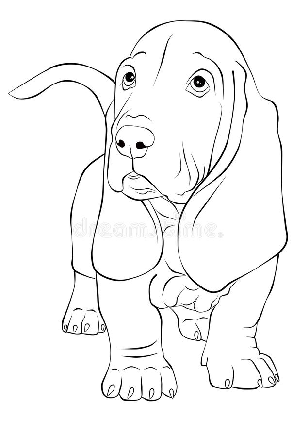 Illustration de découpe de chien de basset illustration stock