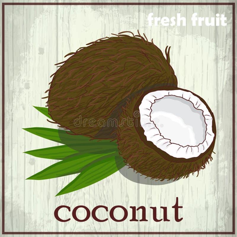 Illustration de dessin de main de noix de coco Fond de croquis de fruit frais illustration stock